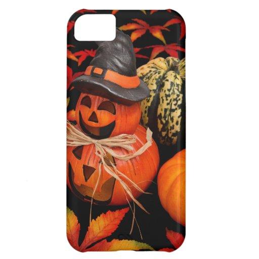 Calabazas de Halloween del otoño y hojas de la caí