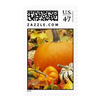 Calabazas de otoño timbre postal