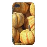 Calabazas decorativas iPhone 4/4S carcasa
