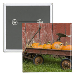 Calabazas en carro viejo pin cuadrada 5 cm