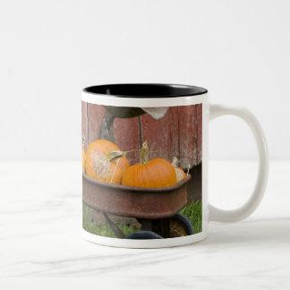 Calabazas en carro viejo taza de café de dos colores