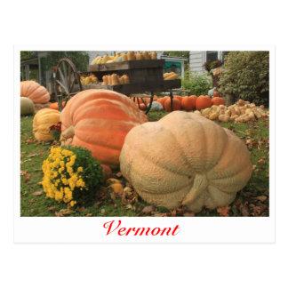 Calabazas gigantes en Vermont Postal