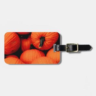 Calabazas para la caída etiquetas bolsas