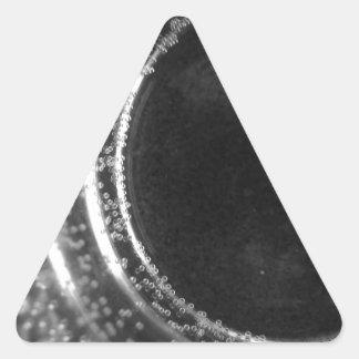 Calabozo Pegatina Triangular