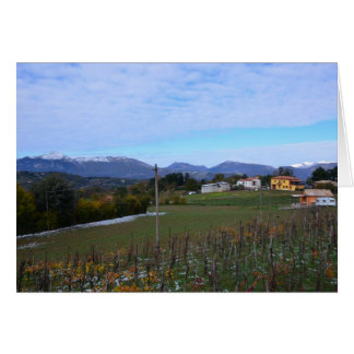 Calabrian Vineyard Card