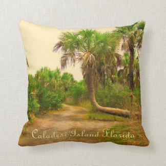 Caladesi Island Dunedin Fl Pillow