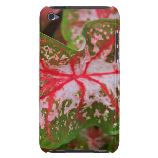 Caladium Case-Mate iPod Touch Barely There Case