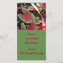 Caladium Christmas card