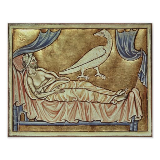 Caladrius bird, reputed to foretell poster