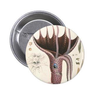 Calamar del paraguas del vintage, animales de la pin redondo de 2 pulgadas