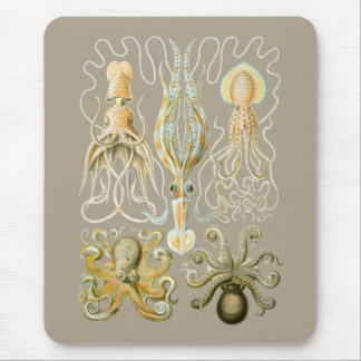 Calamares y Octopods Mouse Pads