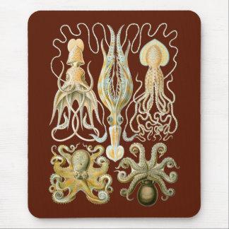 Calamares y Octopods Tapete De Ratón