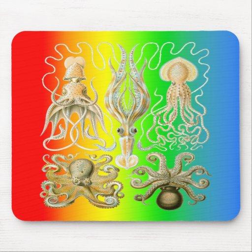 Calamares y Octopods Tapetes De Raton