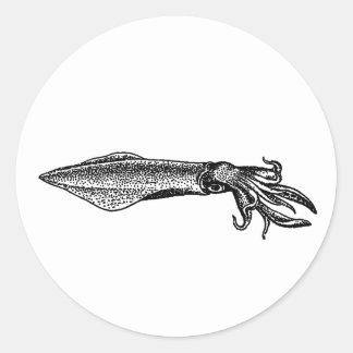 Calamari (calamar) pegatina redonda