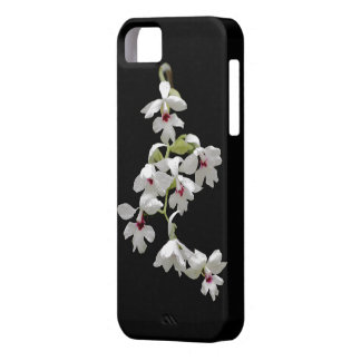 Calanthe Orchid IPhone case iPhone 5 Cases