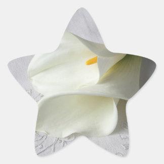 calas blancas en los pegatinas bordados del paño pegatina en forma de estrella