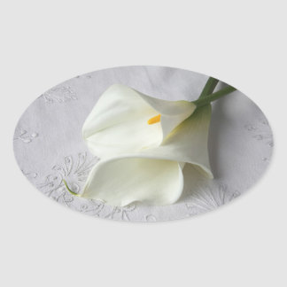 calas blancas en los pegatinas bordados del paño pegatina ovalada