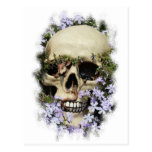 Calavera - Gothic, tarjeta postal/