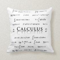 Calculus Equations Throw Pillow