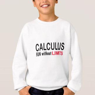 Calculus _ fun without limits sweatshirt
