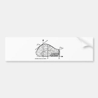 Calculus Hurts my Brain Bumper Sticker