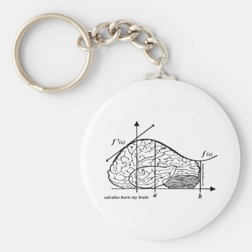 Calculus Hurts my Brain Keychains