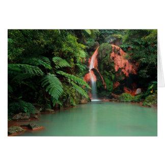 Caldeira Velha Park, Azores Card