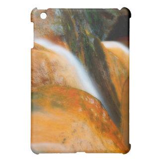 Caldeira Velha Park iPad Mini Cases