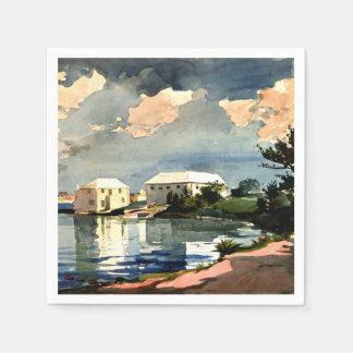 Caldera de la sal, pintura de Bermudas - de Servilletas Desechables