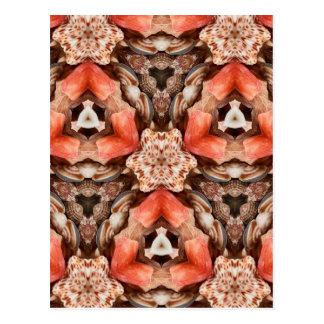 Caleidoscopio de los Seashells Tarjetas Postales