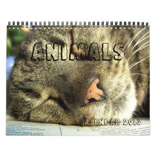 Calendar 2013 - Animals