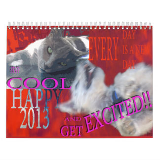 CALENDAR 2013,FUNNY PETS GRAPHICS,MONTHLY PLANNER