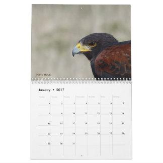 Calendar 2017 - Birds of North America
