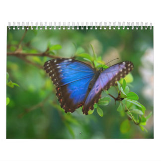 Calendar-Animals-The Art of Insects & Animals Calendar