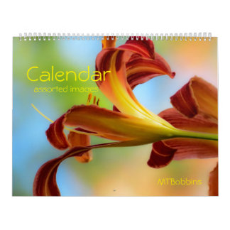 Calendar - Assorted Images - with Large Numbers
