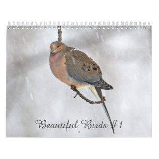 Calendar Beautiful Birds #1