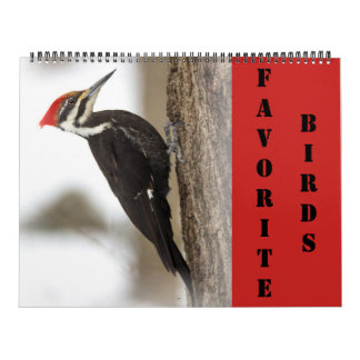 Calendar - Favorite Birds