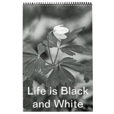 Beach Themed Calendar - Life is Black and White