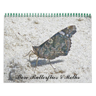 Calendar - More Butterflies & Moths