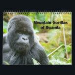 """Calendar - Mountain Gorillas of Rwanda<br><div class=""""desc"""">Monthly calendar featuring photos of endangered wild Mountain Gorillas from within the Virunga Mountain forest on the Rwanda/Congo border.</div>"""