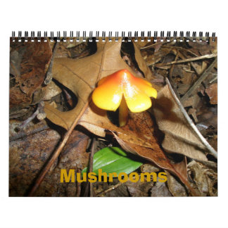 Calendar Mushrooms