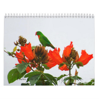 Calendar of colorful flowers in the Phillippines