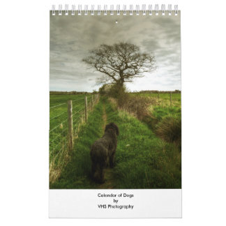 Calendar of Dogs