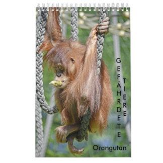 Calendar Orangutans