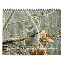 Calendar - Squirrels Chipmunks Groundhogs