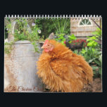 """Calendar: The Chicken Chick&#39;s Flock Calendar<br><div class=""""desc"""">You know The Chicken Chick&#39;s peeps from Facebook and now you can have Rachel,  Blaze,  Calista Flockheart and the gang hanging in your home or office as a beautiful calendar!</div>"""