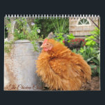 "Calendar: The Chicken Chick&#39;s Flock Calendar<br><div class=""desc"">You know The Chicken Chick&#39;s peeps from Facebook and now you can have Rachel,  Blaze,  Calista Flockheart and the gang hanging in your home or office as a beautiful calendar!</div>"