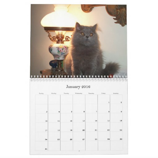 Calendar with cats