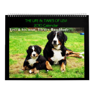 Calendar with Levi the Bernese Mt. Dog