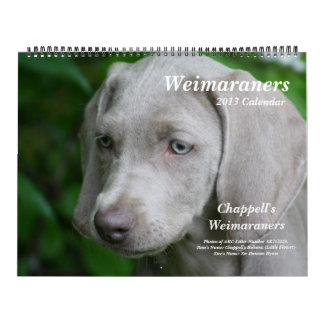 Calendario 1 de Weimaraner